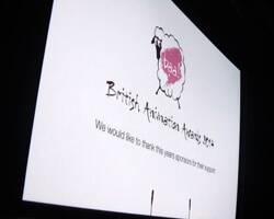 Skwigly Meet the BAA 2014 Finalists