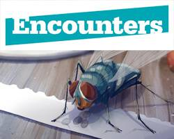 Encounters 2015: Animation Highlights (Part 3)
